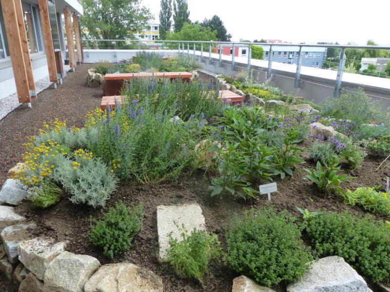Zahrada terasy